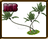 [9V6] Bigtree