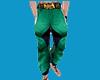 Pants Green Lantern 487