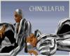 (MB)Male Chincilla fur