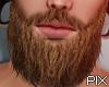 !!P Bastian Beard ⏪