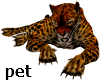 Leopard Pet triggered
