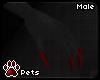[Pets] Geno | claws M