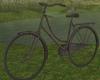 Senja Bike