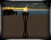 Gilligan's Torch