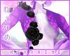 [HIME] Laven Rose 1