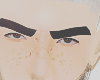 Rock lee brows