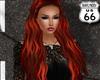 SD Cher Phoenix