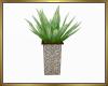 Potted Plant V3