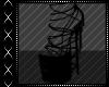 [FS] Black Heels