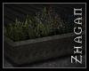 [Z] TAL Herbplanter V1