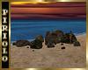 Mossy Beach Rocks