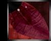 Lust| BurgundyJeans