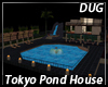 (D) Tokyo Home Pond Asia