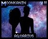 Aquarius Stance .:M:.
