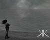 }l{ Stormy Ocean }l{