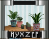 New York Potted Plants