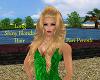PP|Long Shiny Blond Hair