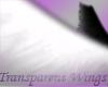 B/W Transparent Wings