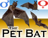 Pet Bat -v1c
