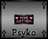 PB His Kitten