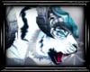 深 Cloud Tiger Pet