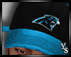 Y  Panthers Caps