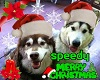 speedy xmas remix