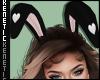 K. Bunny Ears Black