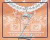 ULD| Custom Z Chn F