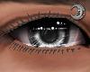 Silver King Eyes