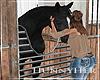 H. Stable Horse V4