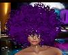 REQ-Disco Purple Hair