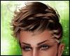 Han Hair Brown blonde