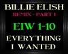 BillieElish~Everything 1