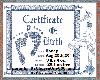 Honey Birth Certificate