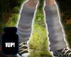 Grimey Socks