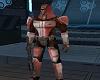 Armed Mando Crusader 2
