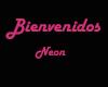 Neon Bienvenidos