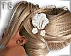 TS_Hair Addons Wedd. Lau