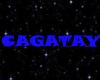 Cagatay amination