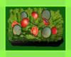 OSP Garden Salad