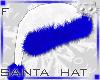 Hat WhiteBlue F1b Ⓚ