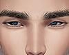 Normal eyebrows