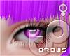 TP Brows - MAGENTA
