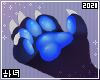 Moon | Paws F