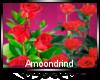 AM:: Rose bushes Enh
