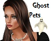 Ghost Companion