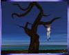 Mz.Tree/Fun/anim