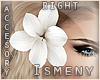 [Is] Flower White -R-
