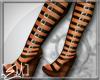 [E.M.] Gladiators Brown